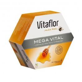 VITAFLOR JALEA REAL MEGAVITAL 200 ML 20 AMP