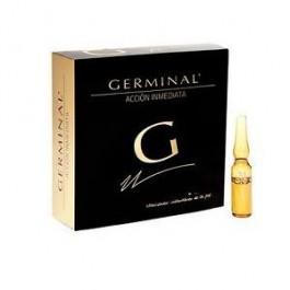 GERMINAL 1 AMP